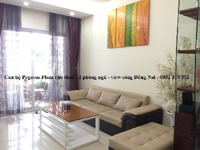 Apartment for rent in Pegasus Plaza, Really nice Furniture and River view