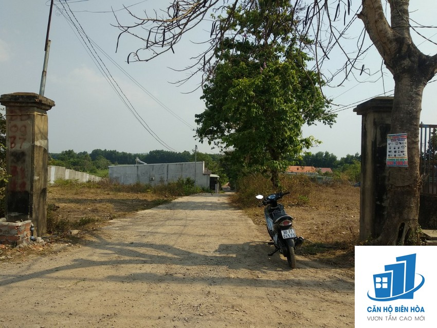 Needs to sell 1062m2 land in An Hoa-Bien Hoa