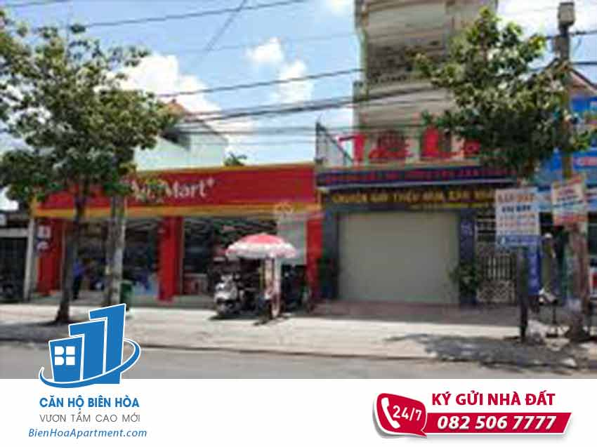 House for sale in Nguyen Van Tien Street, Bien Hoa - NB76