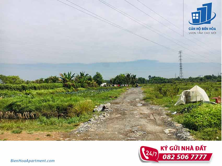 Needs to sell 4000m2 land in Hiep Hoa ward - ĐB73.HHO